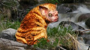 legend of the squonk