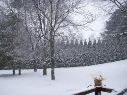 What we got was this; pleasant isn't it?image source: wunderground.com