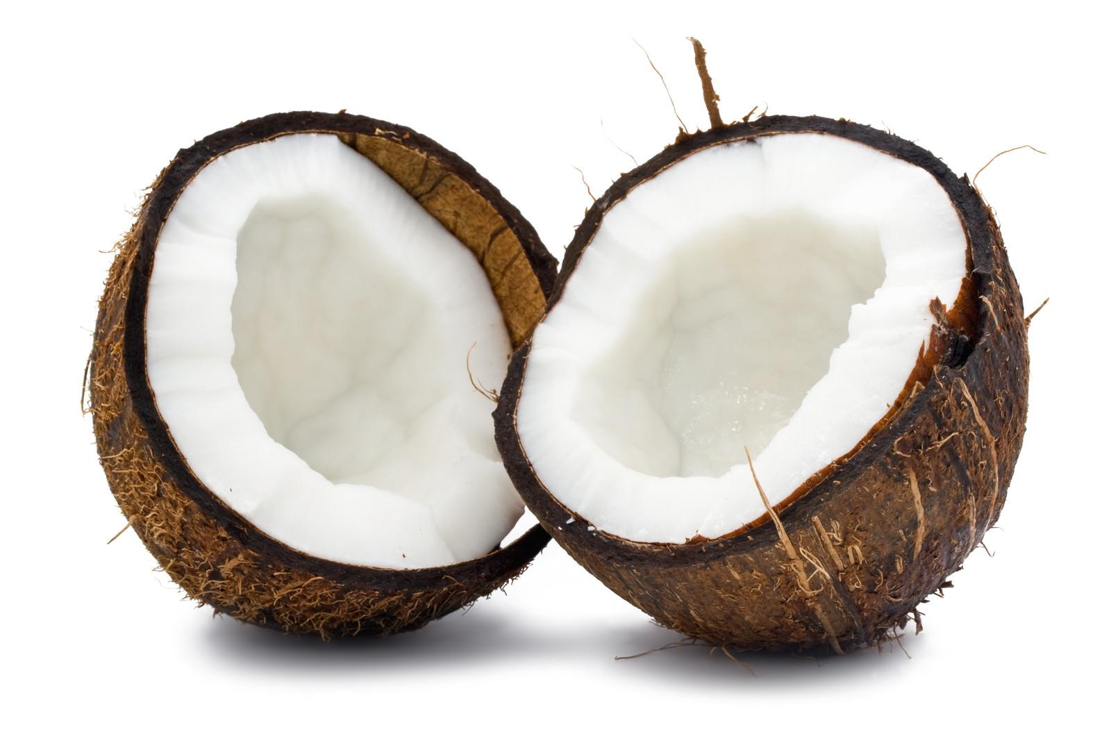 ... coconut bra t shirt grass skirt clip art coconut clip art please