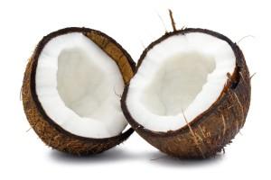 coconut idiotprufs