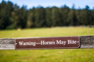 horse bite sign