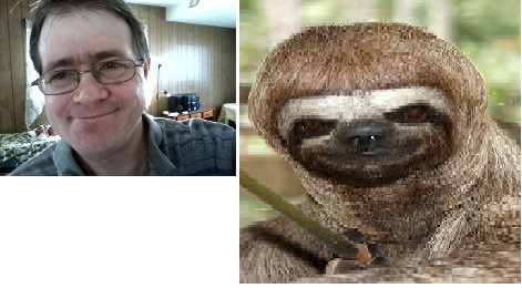 me and the sloth